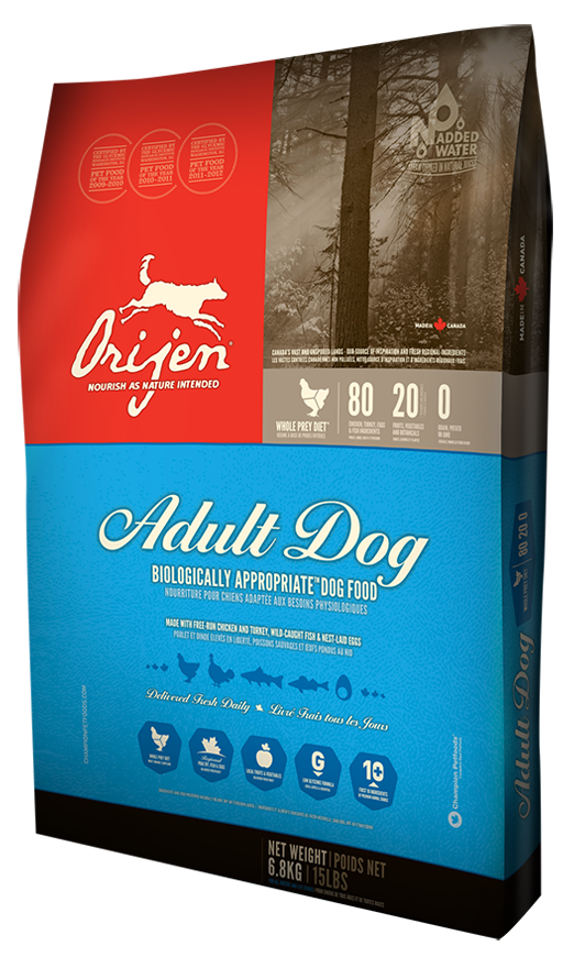 adult_dog